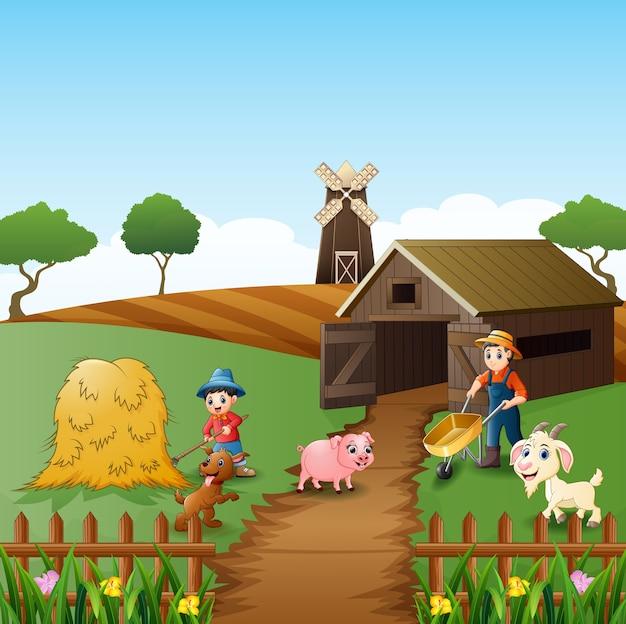 Attività agricole nelle aziende agricole