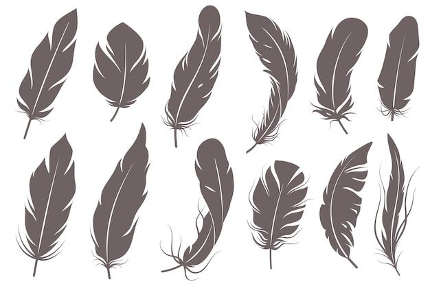 Sagome di piume. diversi uccelli piumati, elementi decorativi a penna di forme semplici grafiche, ali di pennacchio di schizzo vintage grigio elegante vettore isolato set