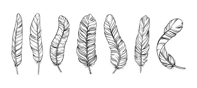 Piume in stile vintage boho. set di piume di uccelli tribali isolate in sfondo bianco