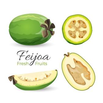 Feijoa frutta fresca intera e tagliata in un design realistico isolato su bianco. guava ananas e prodotto esotico maturo guavasteen con semi