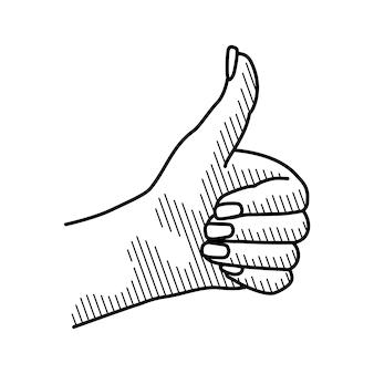 La mano femminile che mostra il simbolo gradisce isolato su bianco