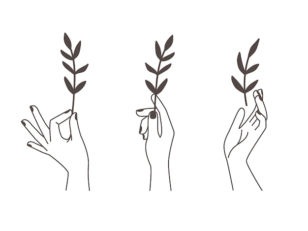 Mani femminili del tatuaggio.
