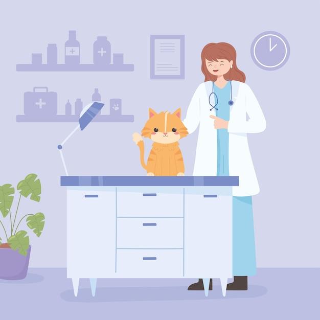 Gatto veterinario femminile