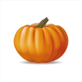 Zucca realistica arancio festiva 3d isolata su bianco.
