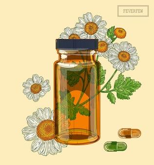 Feverfew fiori e fiala di vetro marrone e pillole, illustrazione disegnata a mano in stile retrò