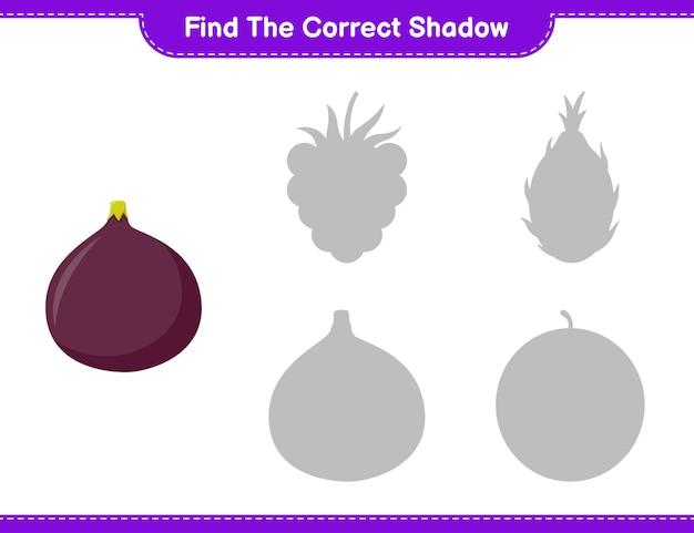 Trova l'ombra corretta. trova e abbina l'ombra corretta della fig. gioco educativo per bambini, foglio di lavoro stampabile