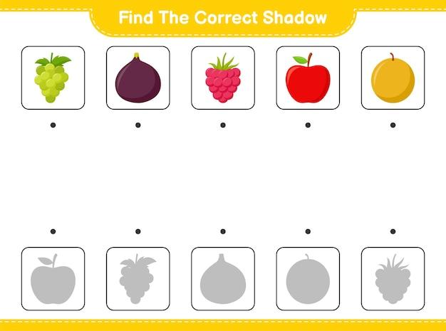 Trova l'ombra corretta. trova e abbina l'ombra corretta di fruits. gioco educativo per bambini, foglio di lavoro stampabile