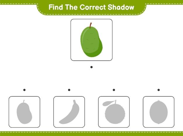 Trova l'ombra corretta. trova e abbina l'ombra corretta di jackfruit. gioco educativo per bambini, foglio di lavoro stampabile