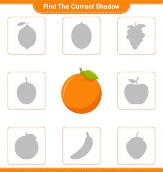 Trova l'ombra corretta. trova e abbina l'ombra corretta di orange. gioco educativo per bambini, foglio di lavoro stampabile