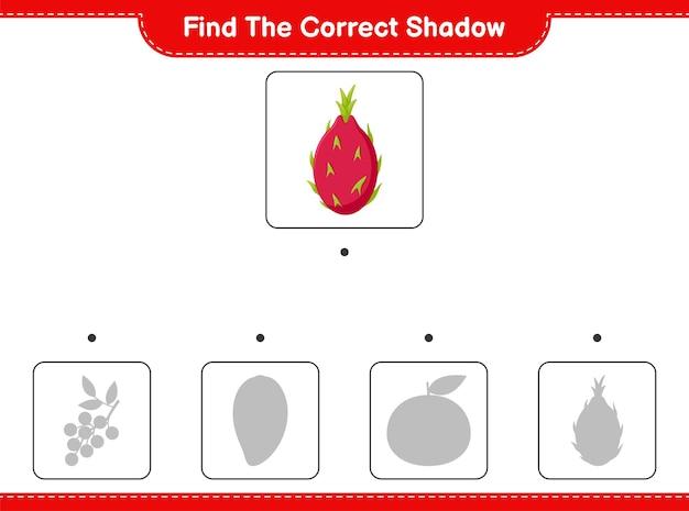 Trova l'ombra corretta. trova e abbina l'ombra corretta di pitaya. gioco educativo per bambini, foglio di lavoro stampabile