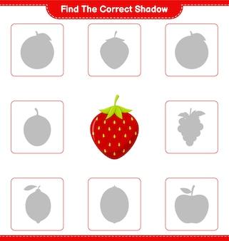 Trova l'ombra corretta. trova e abbina l'ombra corretta di strawberry. gioco educativo per bambini, foglio di lavoro stampabile