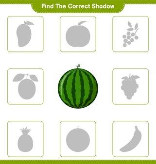 Trova l'ombra corretta. trova e abbina l'ombra corretta di watermelon. gioco educativo per bambini, foglio di lavoro stampabile