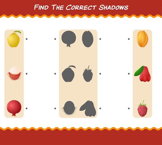 Trova le ombre corrette dei frutti dei cartoni animati. gioco di ricerca e abbinamento. gioco educativo per bambini e bambini in età prescolare