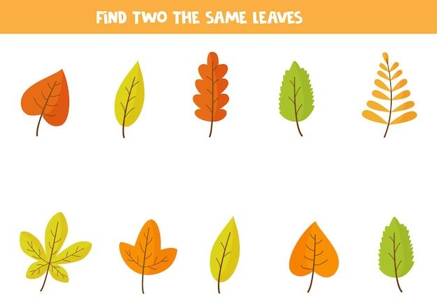 Trova due foglie autunnali identiche. gioco educativo per bambini in età prescolare.