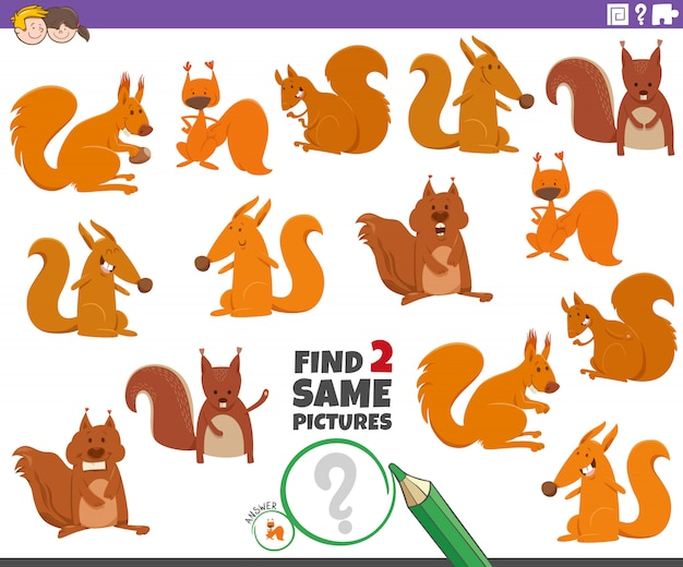 Trova due stessi scoiattoli gioco educativo per bambini