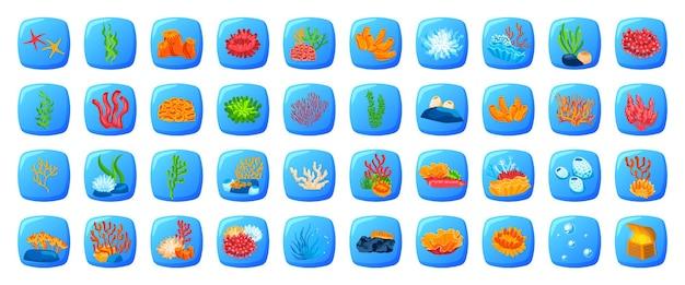 Conchiglia tropicale dell'oceano set marino gioco di pesci