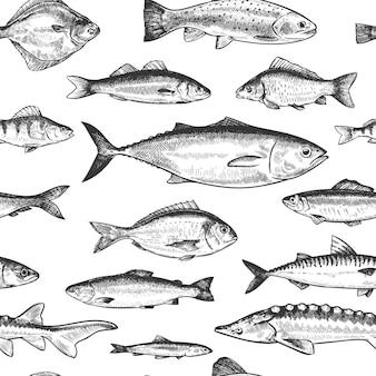 Modello senza cuciture di pesce. disegnati a mano diversi pesci di mare e di fiume, struttura di vettore di schizzo di carta da parati stampa monocromatica di vita sottomarina marina. persico e acciuga, aringa e sgombro, branzino