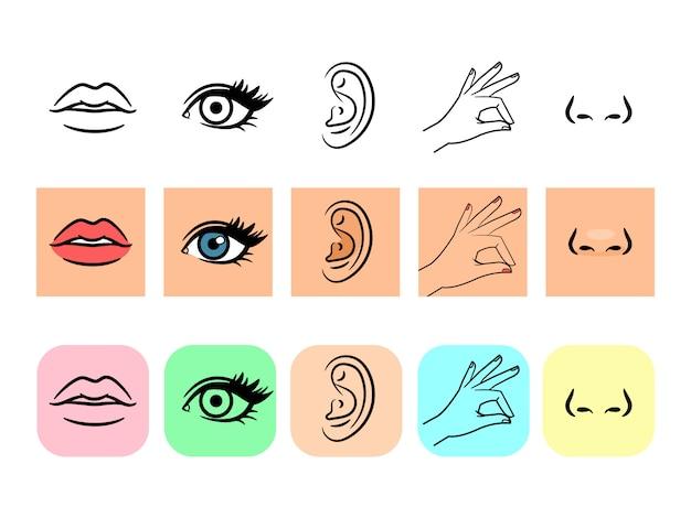 Icone di cinque sensi