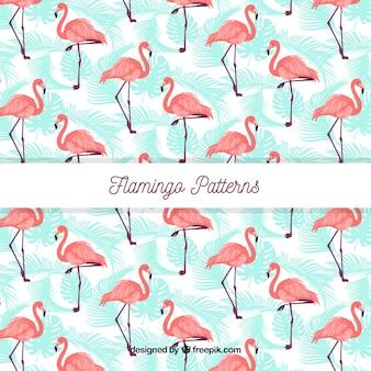 Modello estivo flamenco Vettore Premium
