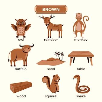Flashcard per imparare i colori marroni e set di vocaboli