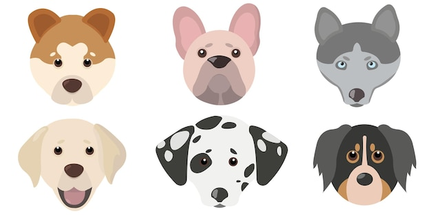 Set testa di cane carino piatto
