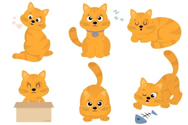 Collezione di gatti allo zenzero carino piatto