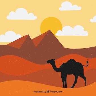 Le piramidi egiziane piane abbelliscono con la carovana dei cammelli