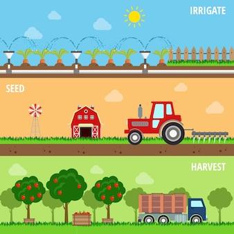 Set stile piatto di semi di irrigazione fattoria coltivano il processo di raccolta