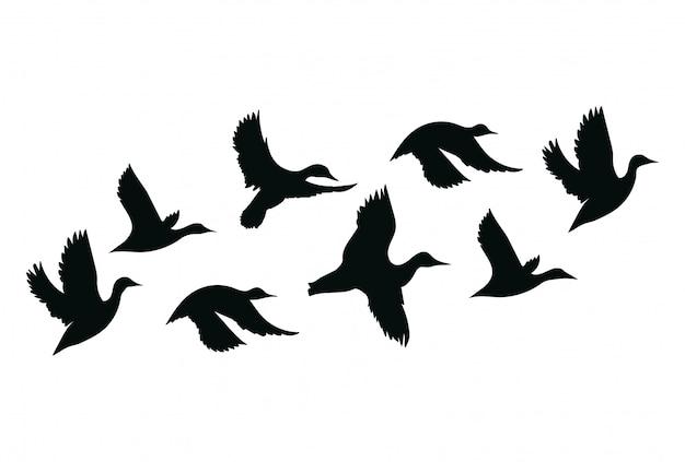 Stormo di anatre. uno stormo di uccelli cartone animato. illustrazione di uccelli in volo.