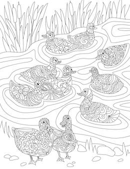 Stormo di anatre che nuotano nell'acqua dello stagno con erba alta incolore che disegna più oche selvatiche