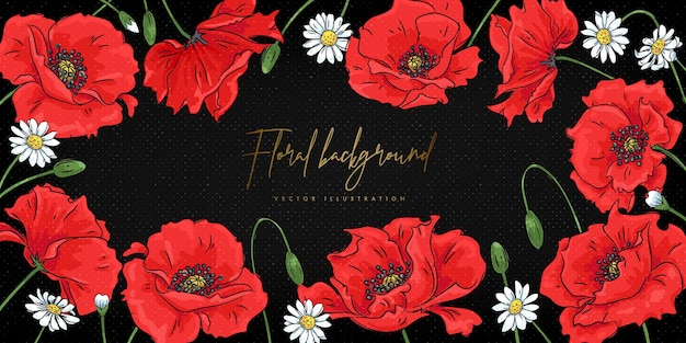 Sfondo floreale con papaveri rossi e margherite Vettore Premium