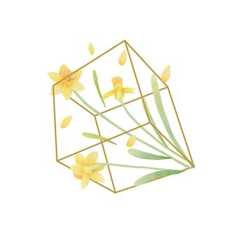 Sfondo floreale con i fiori del narciso dell'acquerello in terrario