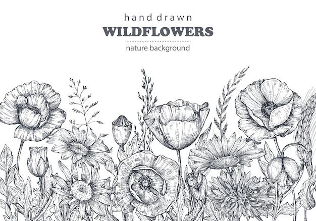 Sfondi floreali con papavero disegnato a mano e altri fiori e piante. illustrazione vettoriale monocromatica nello stile di abbozzo.