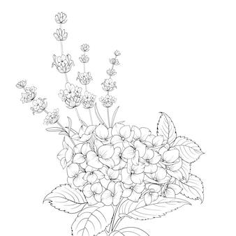 Ghirlanda floreale di lavanda e ortensia isolato su sfondo bianco.