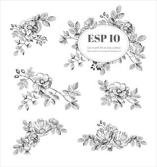 Elementi floreali disegnati a mano. fiori impostati. illustrazione vettoriale di rosa canina. contorno nero