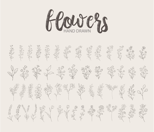 Logo disegnato a mano floreale