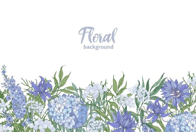 Sfondo orizzontale floreale decorato con fiori da giardino in fiore primaverili che crescono sul bordo inferiore su sfondo bianco.