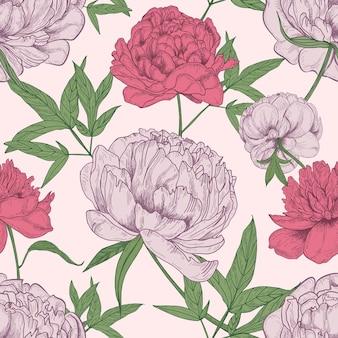 Motivo floreale senza soluzione di continuità con bellissimi fiori di peonia disegnati a mano