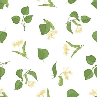 Motivo floreale senza soluzione di continuità con rametti di tiglio in fiore disegnati a mano su sfondo bianco