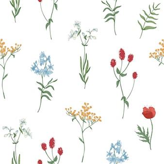 Motivo floreale senza soluzione di continuità con fiori che sbocciano selvatici ed erbe fiorite su bianco
