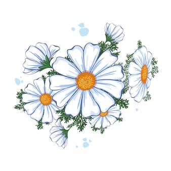 Composizione estiva floreale. bouquet di margherite bianche.