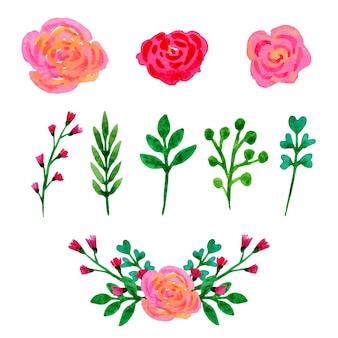 Acquarello floreale collezione. fiori e foglie, elementi di progettazione rami set. disegnato a mano vettoriale