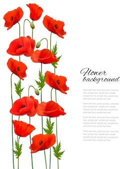 Sfondo di fiori con papaveri. vettore.