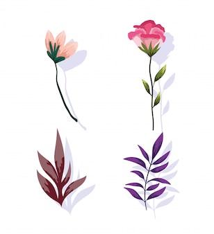 Progettazione della natura della pianta della vegetazione del fogliame del ramo del fiore