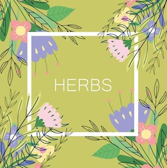Fiore ed erbe aromatiche