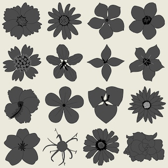 Icona di flora petalo di fiore.