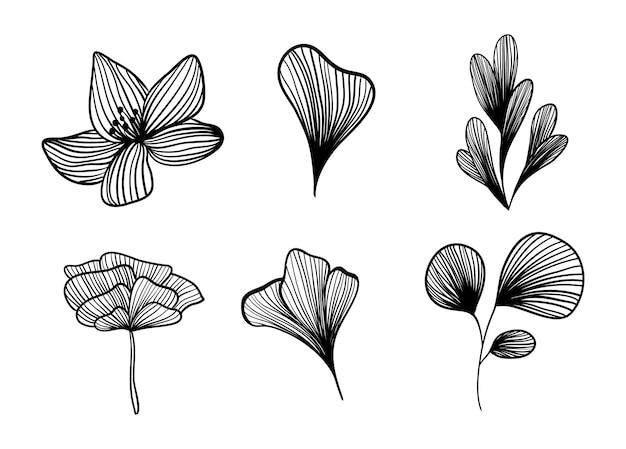 Petali di fiori e fiori in linea. disegnare a mano di illustrazione vettoriale