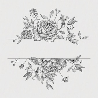 Bordo vintage fiore. disegno botanico di rose di vettore.