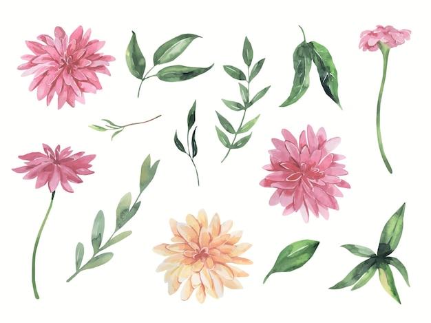 Elementi di foglie verdi di fiori