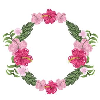 Cornice rotonda con decorazione exoitc di fiori di ibisco, pittura illustrativa